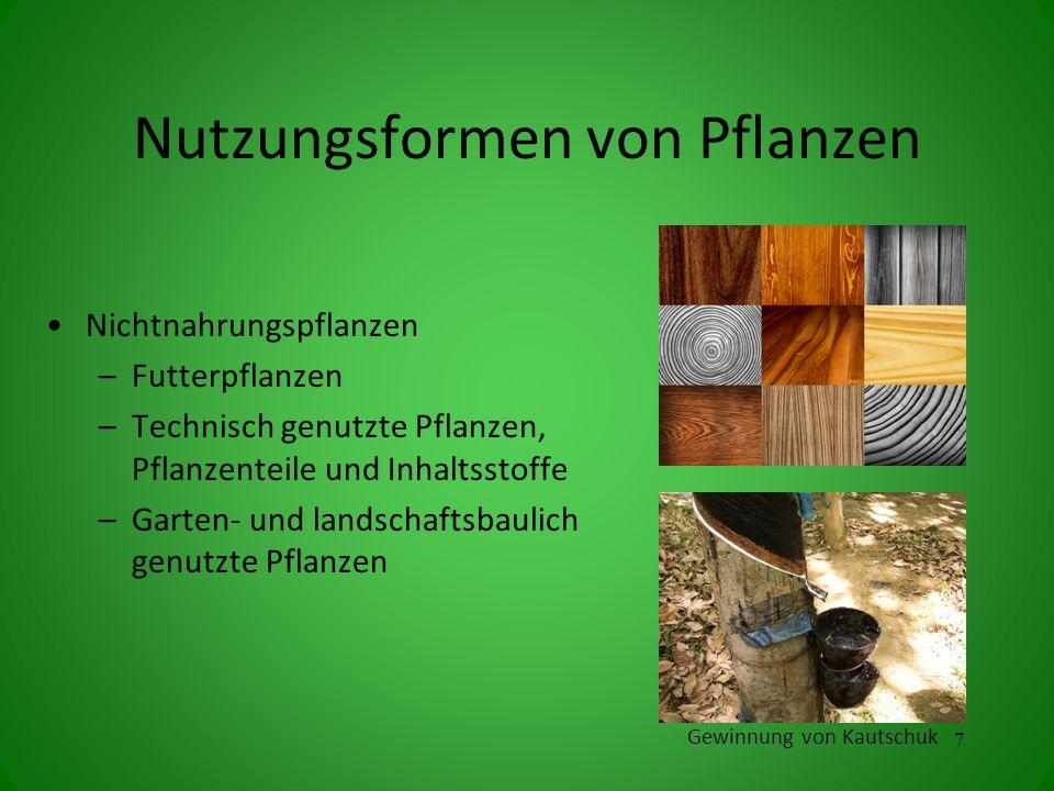Nutzungsformen von Pflanzen Nichtnahrungspflanzen –Futterpflanzen –Technisch genutzte Pflanzen, Pflanzenteile und Inhaltsstoffe –Garten- und landschaf