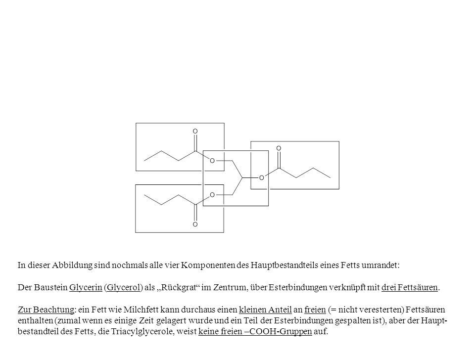 In dieser Abbildung sind nochmals alle vier Komponenten des Hauptbestandteils eines Fetts umrandet: Der Baustein Glycerin (Glycerol) als Rückgrat im Z