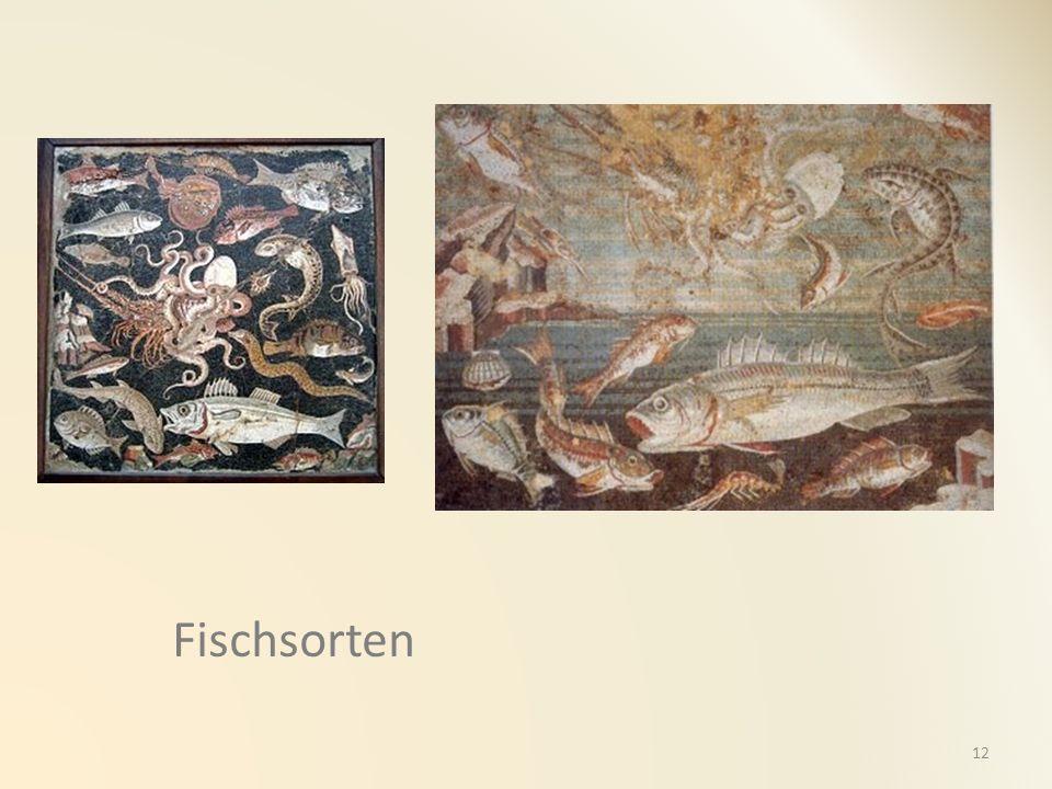 Fischsorten 12