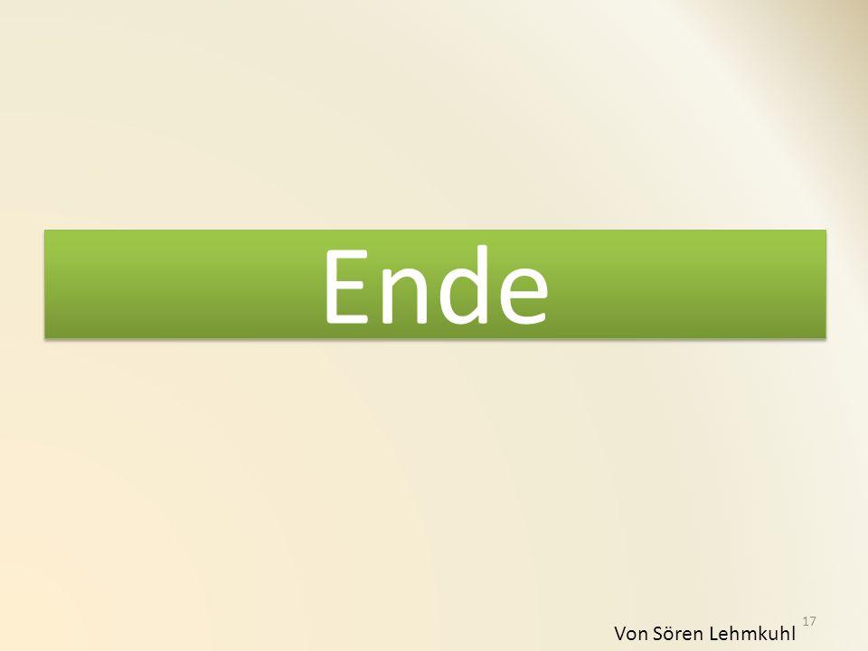 Ende Von Sören Lehmkuhl 17