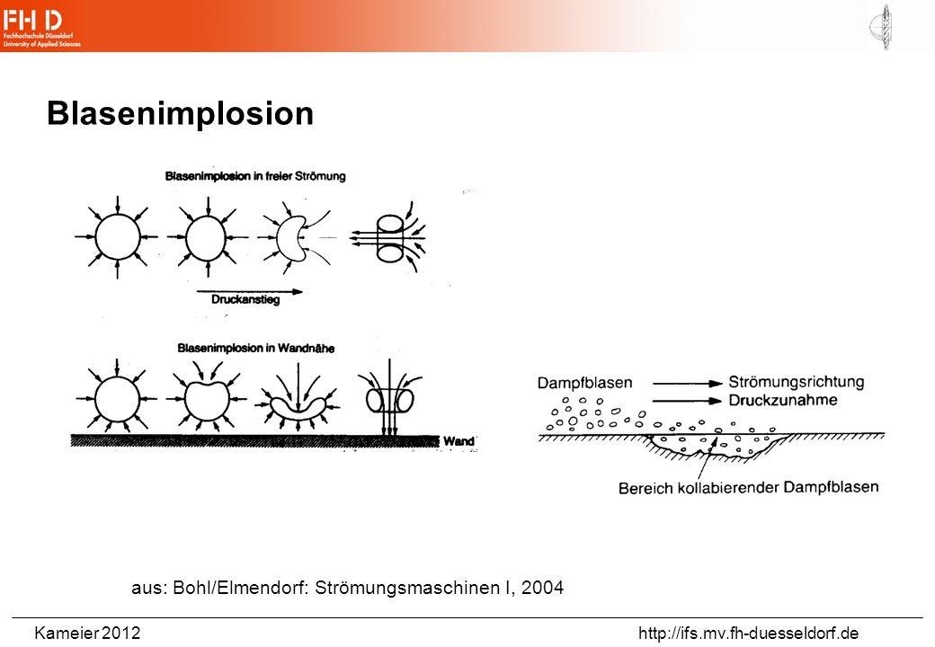 Kameier 2012 http://ifs.mv.fh-duesseldorf.de http://www.nature.com/nature/journal/v413/n6855/full/413477a0.html http://www.youtube.com/watch?v=eKPrGxB1Kzc Pistol Shrimp (Hinweis von N.