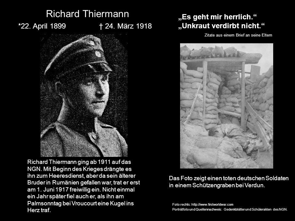 Richard Thiermann *22. April 1899 24. März 1918 Richard Thiermann ging ab 1911 auf das NGN. Mit Beginn des Krieges drängte es ihn zum Heeresdienst, ab