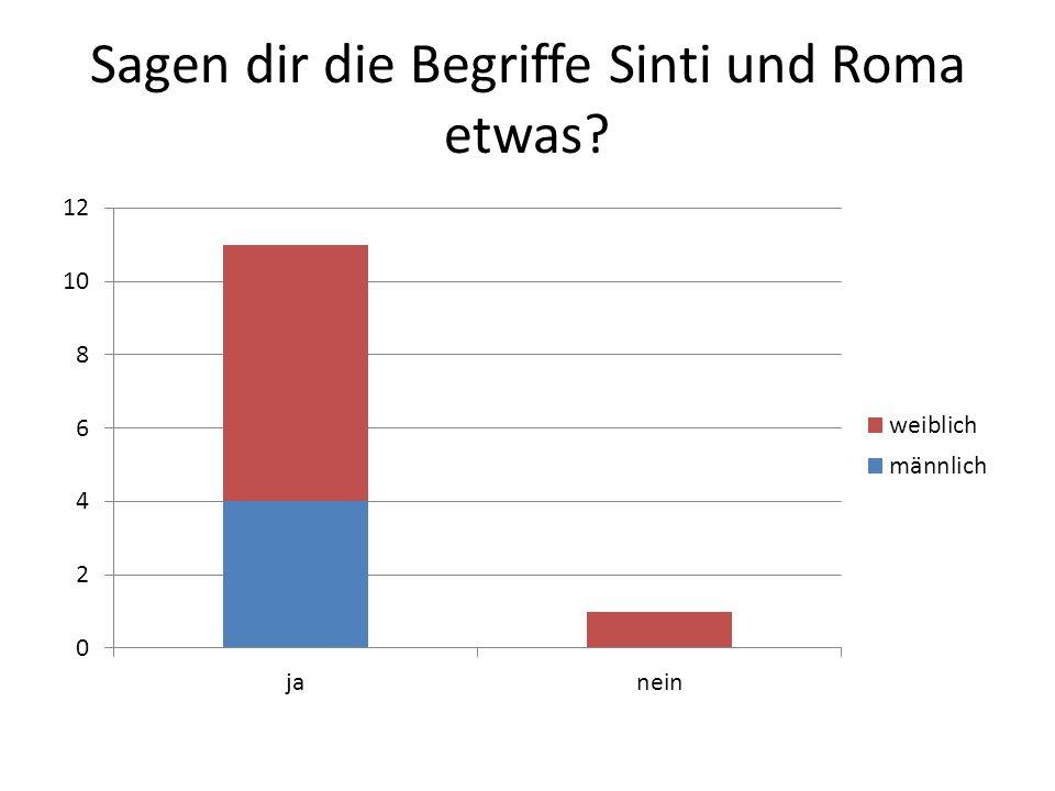 Sagen dir die Begriffe Sinti und Roma etwas?