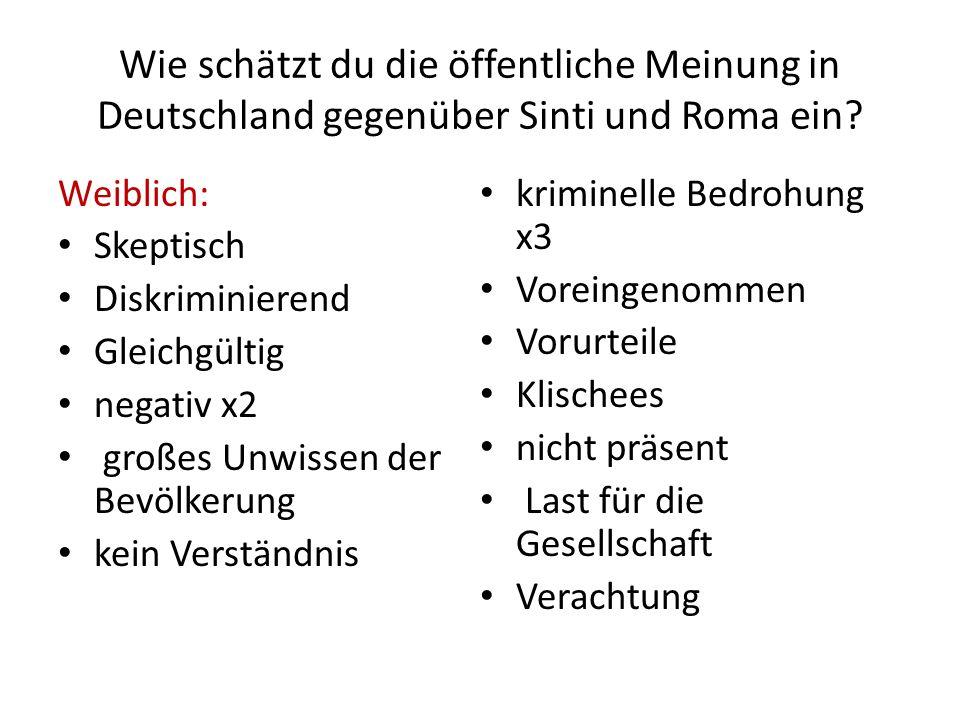 Wie schätzt du die öffentliche Meinung in Deutschland gegenüber Sinti und Roma ein? Weiblich: Skeptisch Diskriminierend Gleichgültig negativ x2 großes