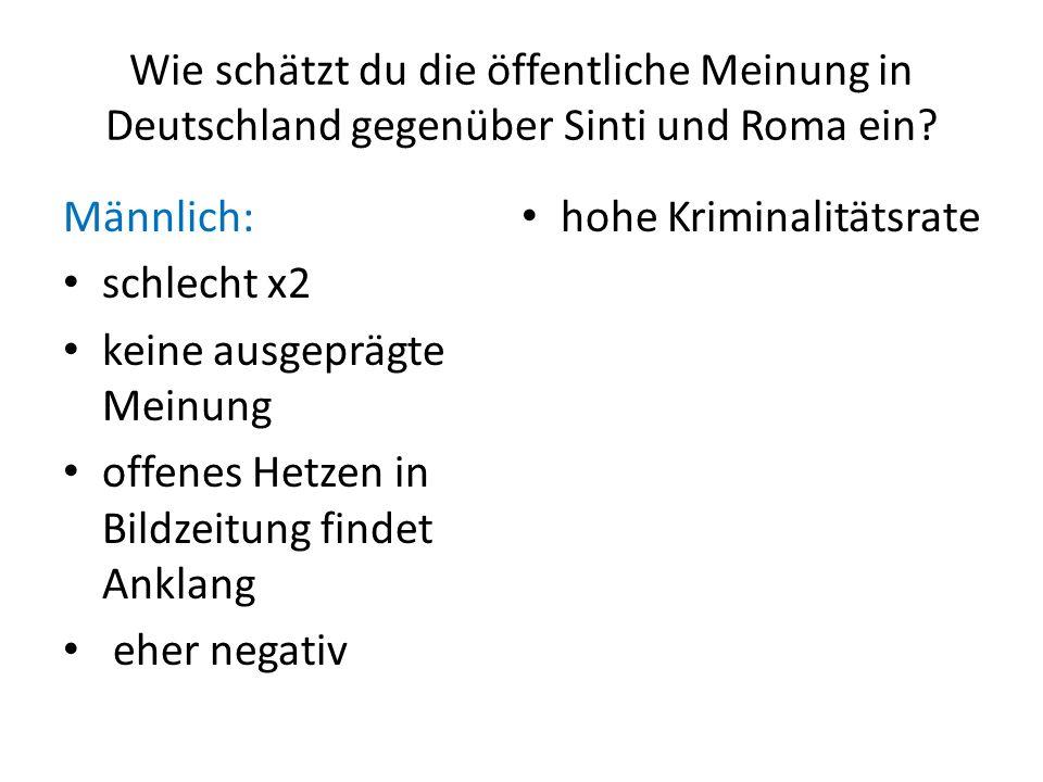 Wie schätzt du die öffentliche Meinung in Deutschland gegenüber Sinti und Roma ein? Männlich: schlecht x2 keine ausgeprägte Meinung offenes Hetzen in