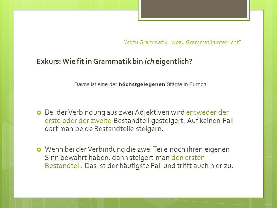 Wozu Grammatik, wozu Grammatikunterricht? Exkurs: Wie fit in Grammatik bin ich eigentlich? Bei der Verbindung aus zwei Adjektiven wird entweder der er