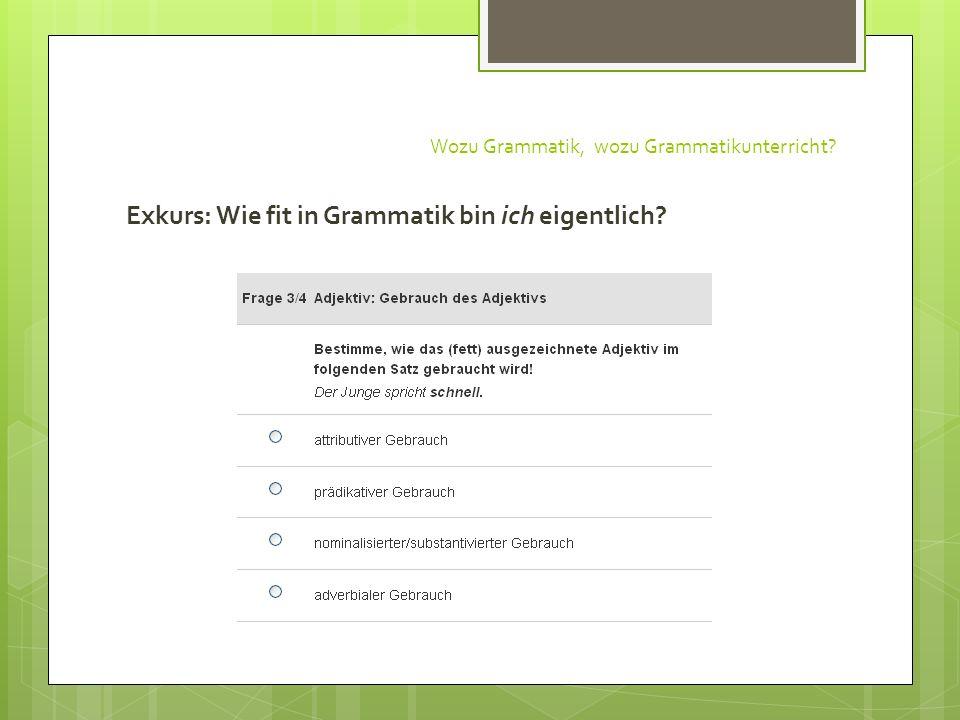 Wozu Grammatik, wozu Grammatikunterricht? Exkurs: Wie fit in Grammatik bin ich eigentlich?