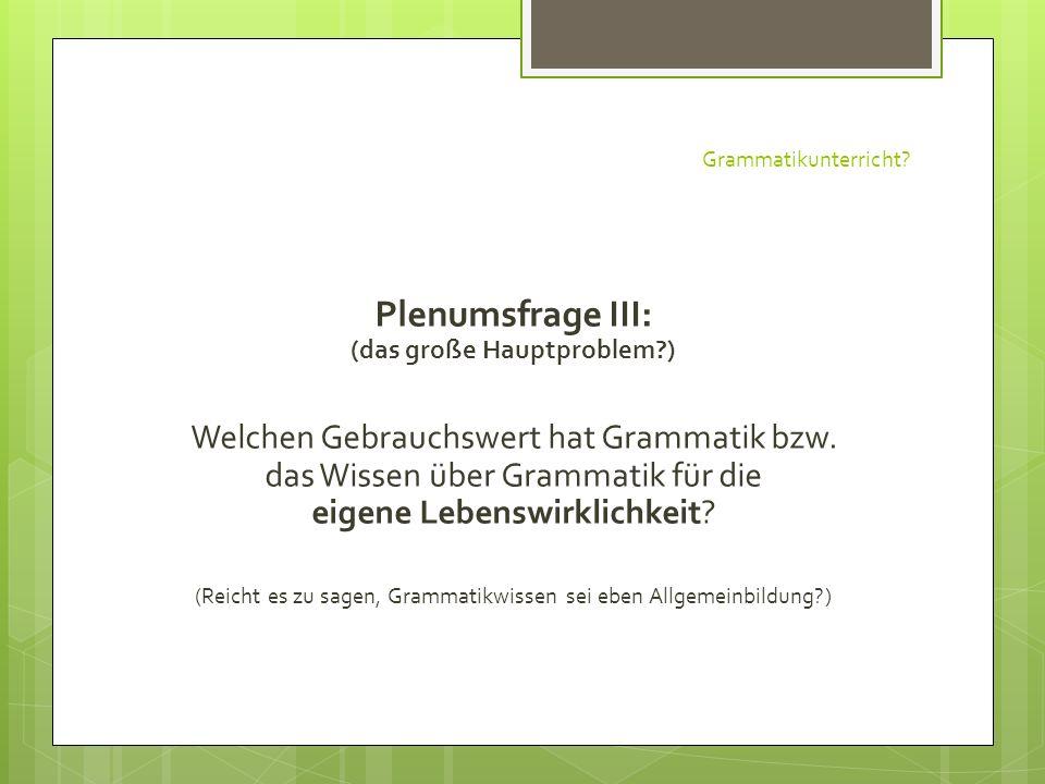 Grammatikunterricht? Plenumsfrage III: (das große Hauptproblem?) Welchen Gebrauchswert hat Grammatik bzw. das Wissen über Grammatik für die eigene Leb