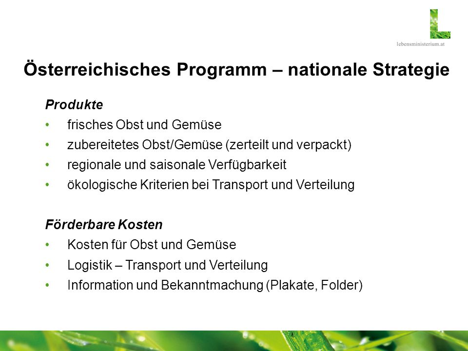 Österreichisches Programm – nationale Strategie Maßnahmen Startaktion zu Beginn des Schuljahres Schulaktionen (freiwillige Teilnahme) Abwicklung Agrarmarkt Austria (Zahlstelle) analog Schulmilchprogramm sowohl Schulen als auch Lieferanten können Förderung beantragen Finanzierung 50 % EU-Mittel - max.