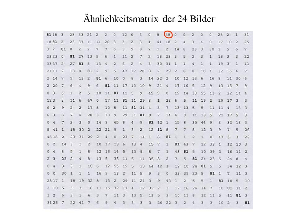 48 von 81 Personen sortierten Bild 01 und Bild 15 in eine Gruppe = hohe Ähnlichkeit 15 Liebespaar, O.