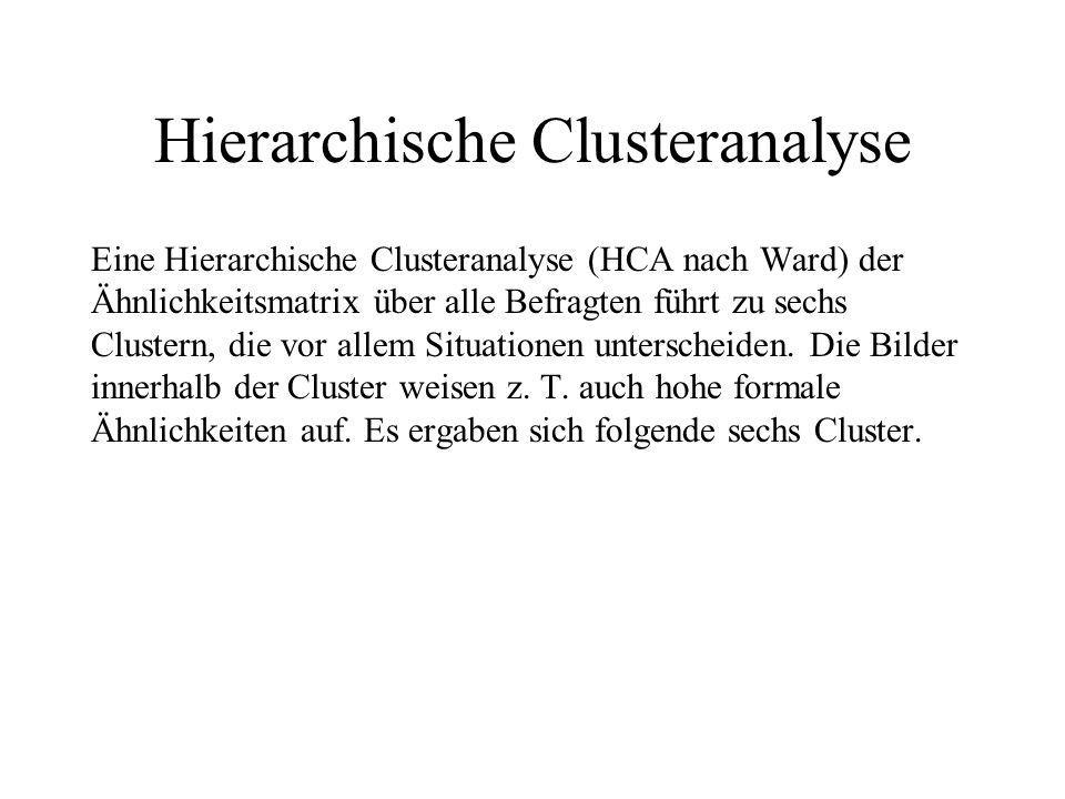 Hierarchische Clusteranalyse Eine Hierarchische Clusteranalyse (HCA nach Ward) der Ähnlichkeitsmatrix über alle Befragten führt zu sechs Clustern, die vor allem Situationen unterscheiden.