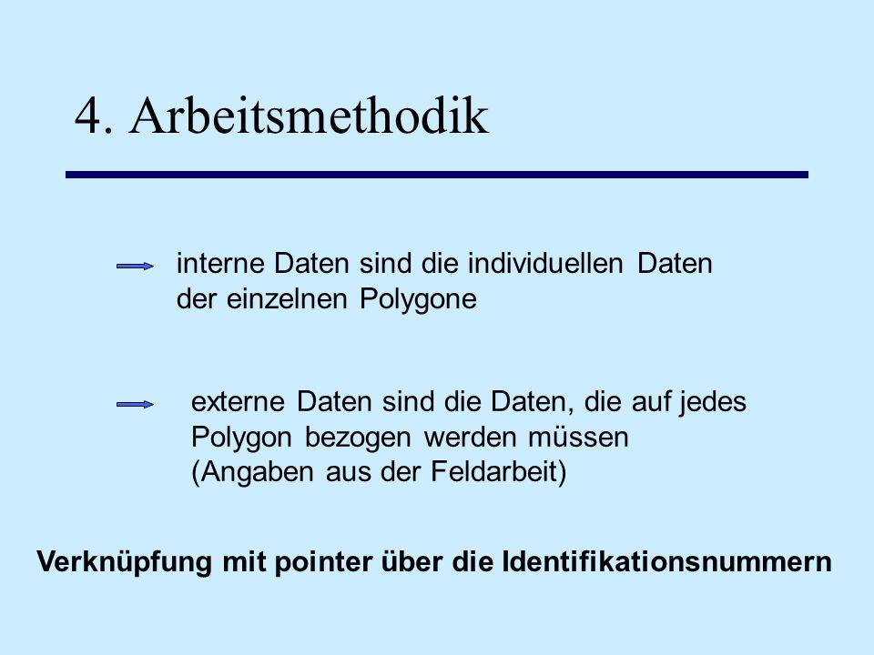 4. Arbeitsmethodik interne Daten sind die individuellen Daten der einzelnen Polygone externe Daten sind die Daten, die auf jedes Polygon bezogen werde