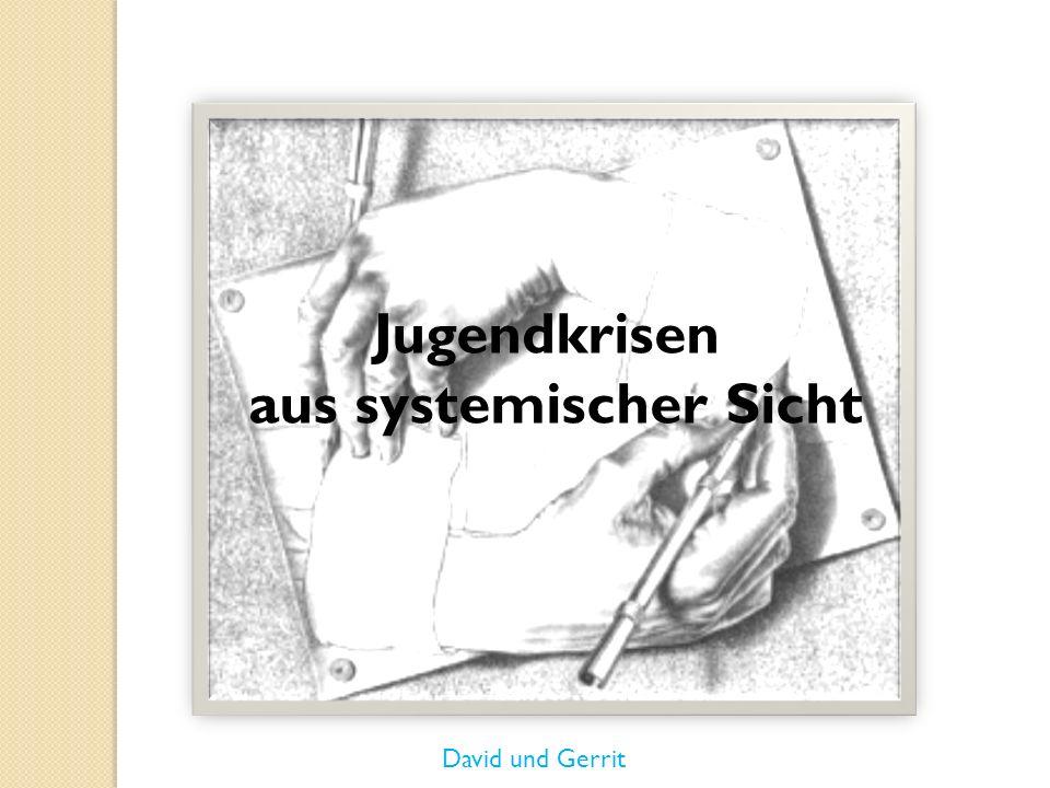 Jugendkrisen aus systemischer Sicht David und Gerrit