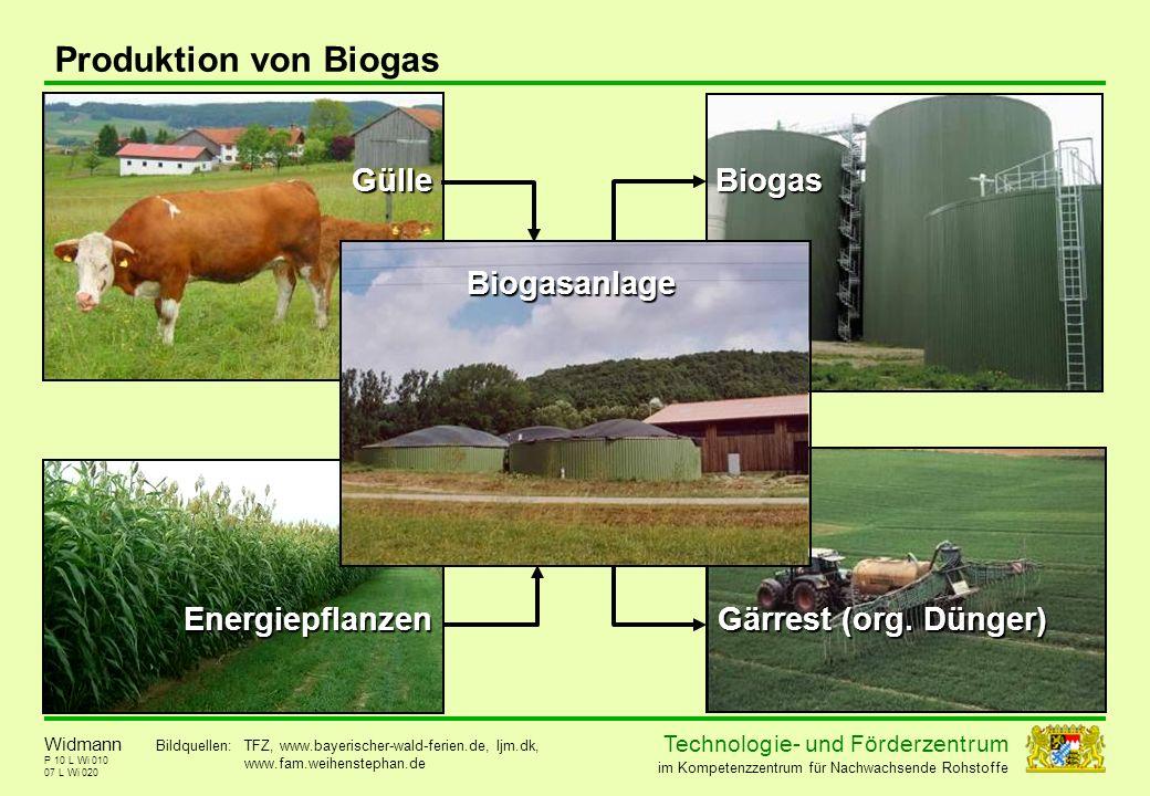 Technolog ie - und För der zent r um im Kompetenzzentrum für Nachwachsende Rohstoffe P 10 L Wi 010 Produktion von Biogas 07 L Wi 020 Widmann Gülle Ene