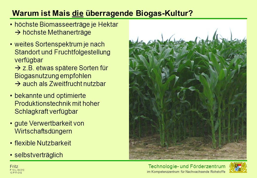 Technolog ie - und För der zent r um im Kompetenzzentrum für Nachwachsende Rohstoffe P 10 L Wi 010 10 P Fr 018 Fritz Warum ist Mais die überragende Bi