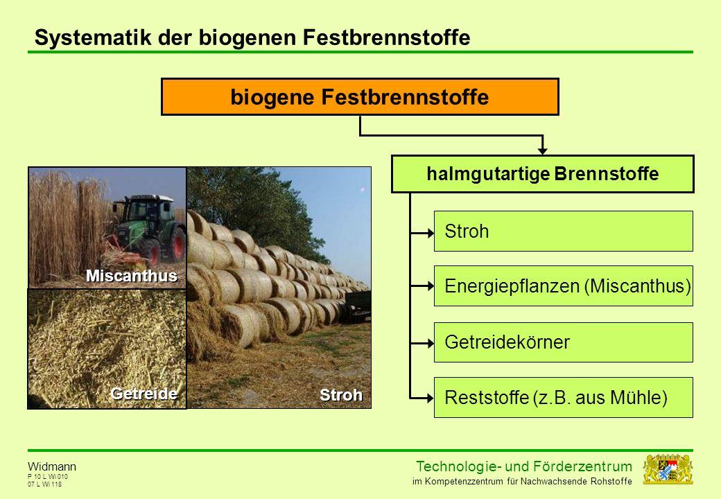 Technolog ie - und För der zent r um im Kompetenzzentrum für Nachwachsende Rohstoffe P 10 L Wi 010 Systematik der biogenen Festbrennstoffe 07 L Wi 118