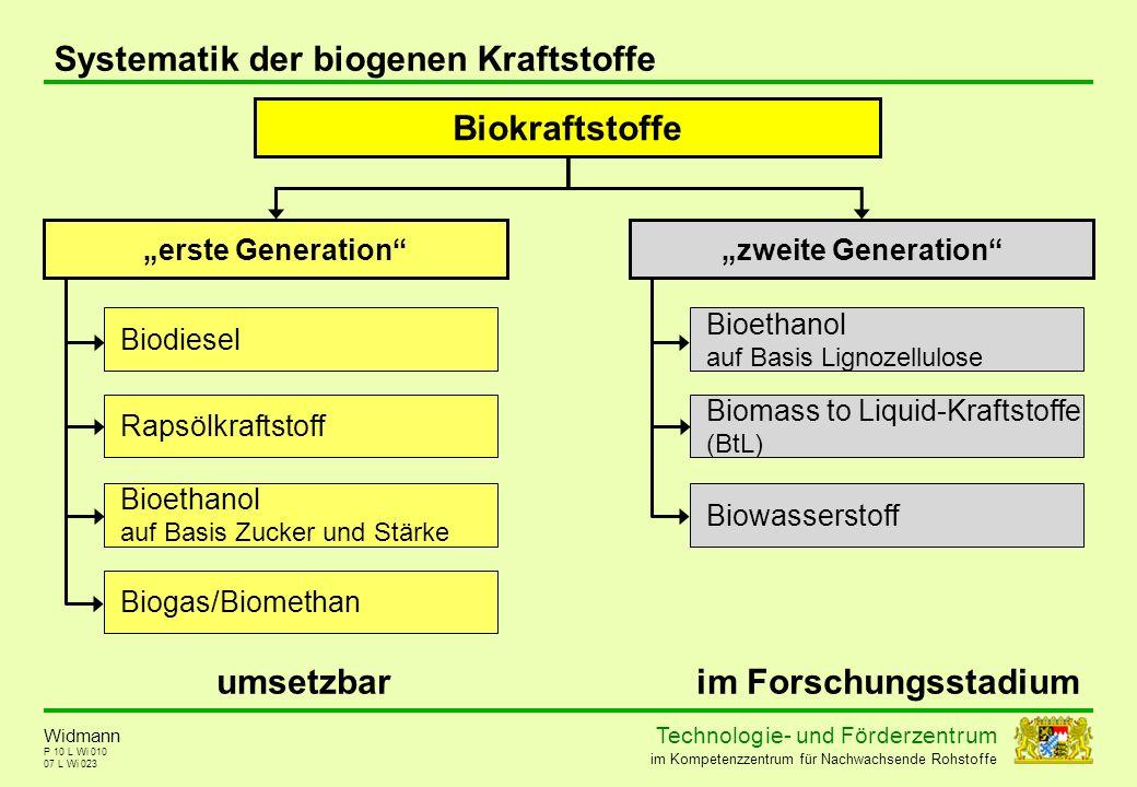 Technolog ie - und För der zent r um im Kompetenzzentrum für Nachwachsende Rohstoffe P 10 L Wi 010 Systematik der biogenen Kraftstoffe 07 L Wi 023 Wid