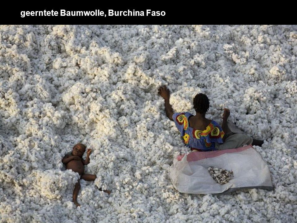 geerntete Baumwolle, Burchina Faso