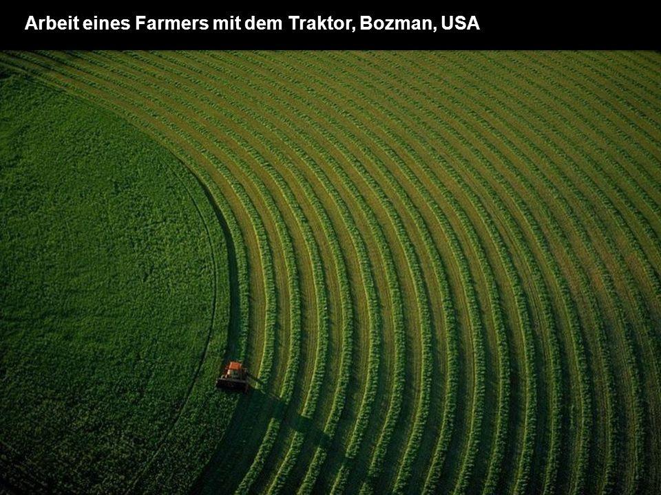 Arbeit eines Farmers mit dem Traktor, Bozman, USA
