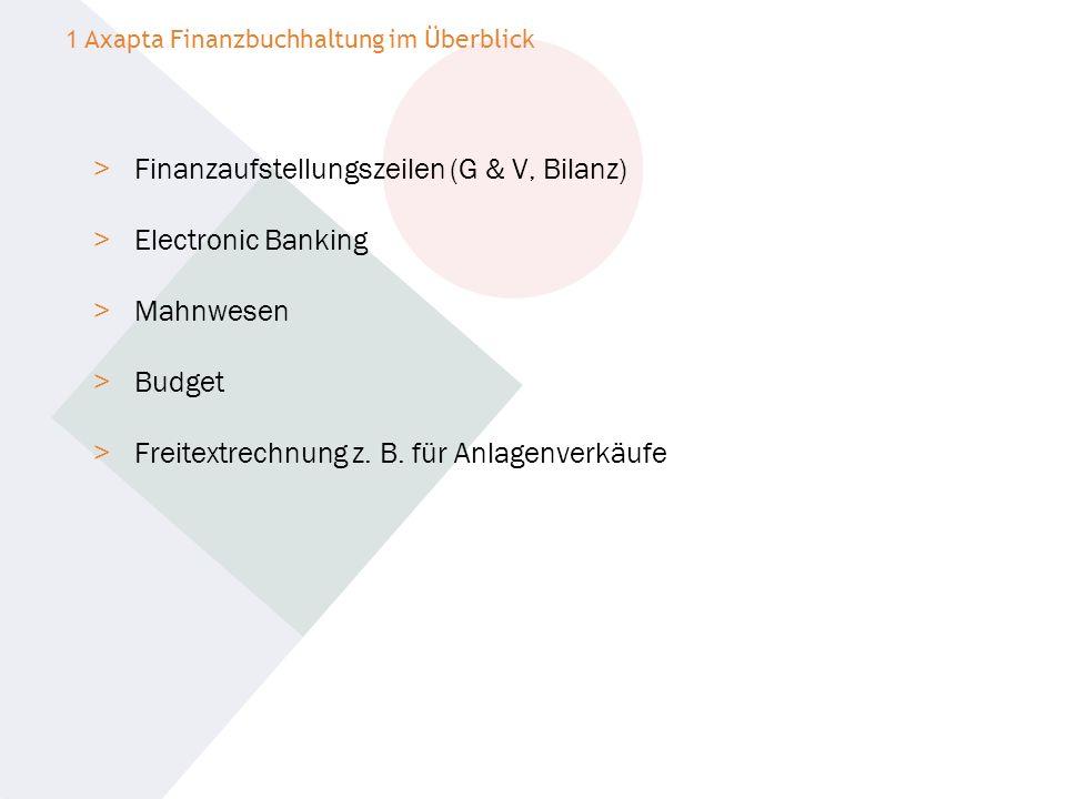 > Finanzaufstellungszeilen (G & V, Bilanz) > Electronic Banking > Mahnwesen > Budget > Freitextrechnung z. B. für Anlagenverkäufe 1 Axapta Finanzbuchh