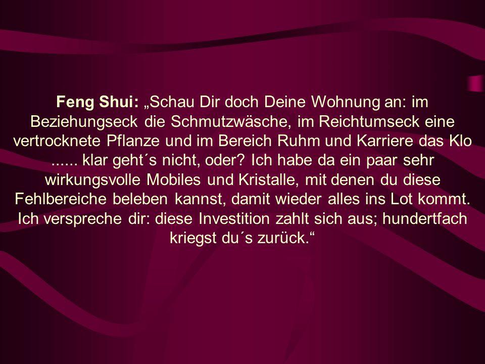 Feng Shui: Schau Dir doch Deine Wohnung an: im Beziehungseck die Schmutzwäsche, im Reichtumseck eine vertrocknete Pflanze und im Bereich Ruhm und Karriere das Klo......