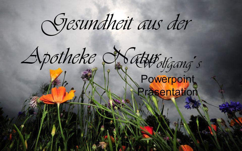 Wolfgang´s Powerpoint Präsentation Gesundheit aus der Apotheke Natur