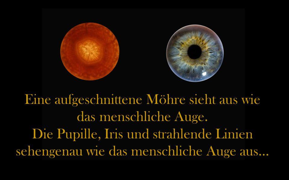 Eine aufgeschnittene Möhre sieht aus wie das menschliche Auge.