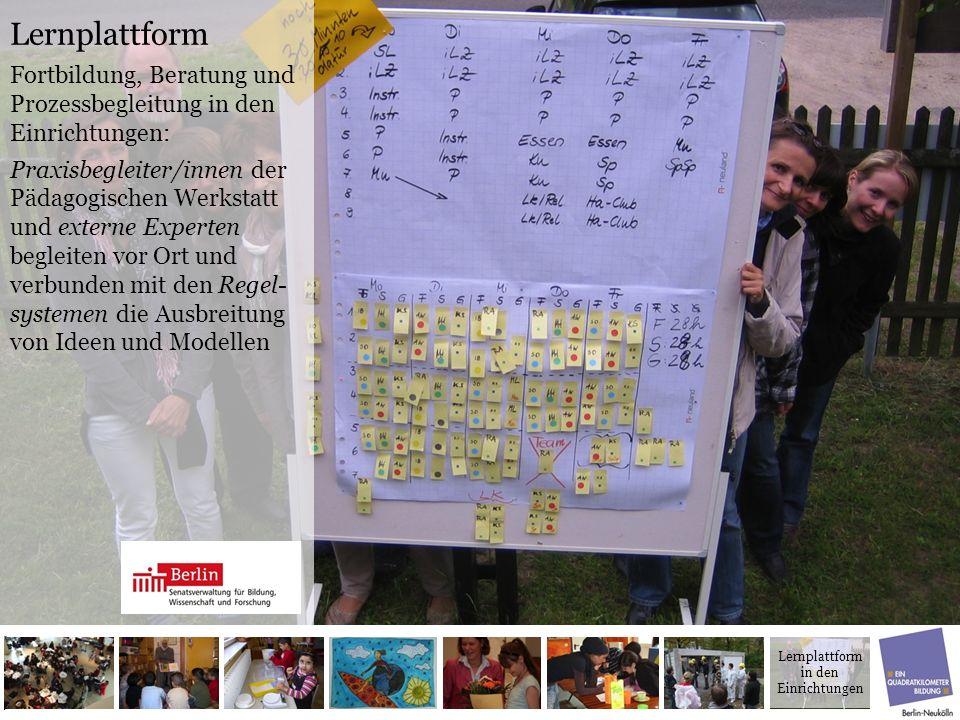 Lernplattform Fortbildung, Beratung und Prozessbegleitung in den Einrichtungen: Praxisbegleiter/innen der Pädagogischen Werkstatt und externe Experten