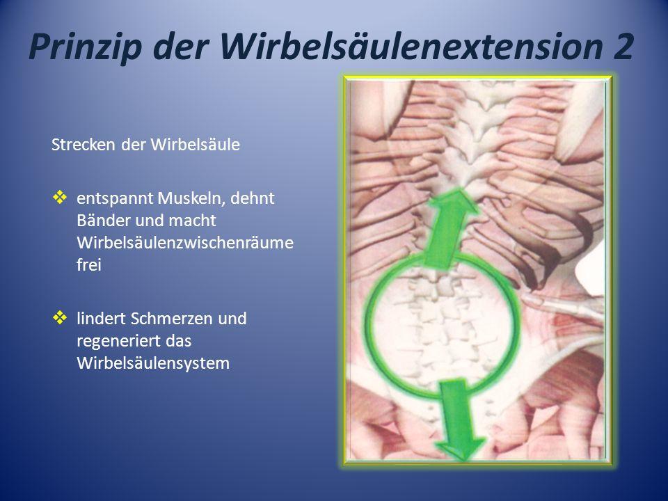 Prinzip der Wirbelsäulenextension 2 Strecken der Wirbelsäule entspannt Muskeln, dehnt Bänder und macht Wirbelsäulenzwischenräume frei lindert Schmerze