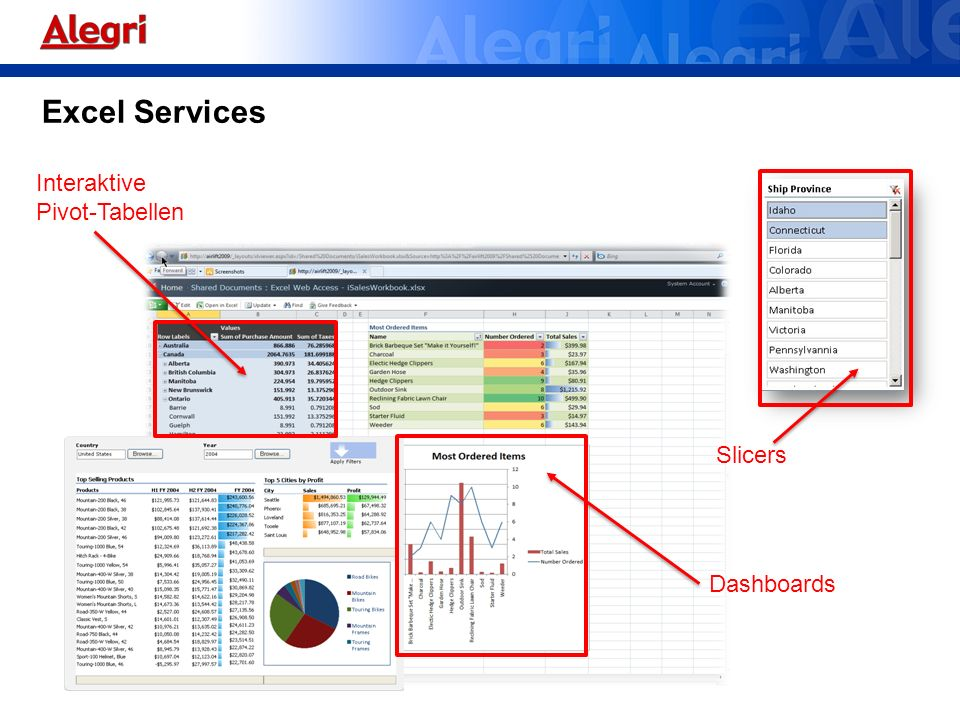 Excel Services Interaktive Pivot-Tabellen Dashboards Slicers