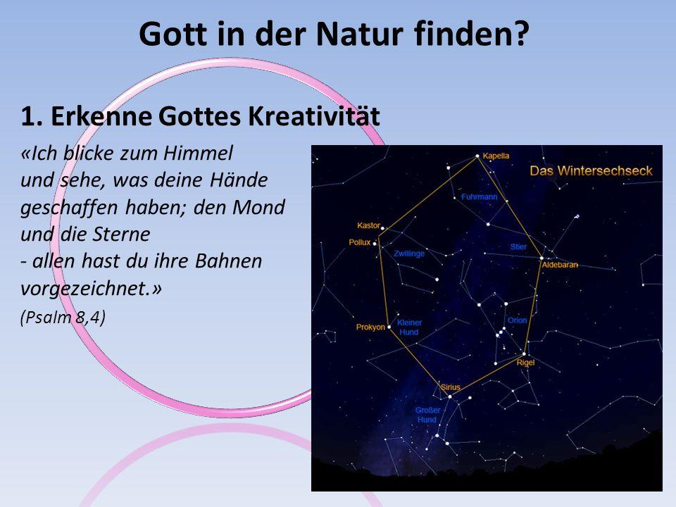 Gott in der Natur finden? 1. Erkenne Gottes Kreativität «Ich blicke zum Himmel und sehe, was deine Hände geschaffen haben; den Mond und die Sterne - a