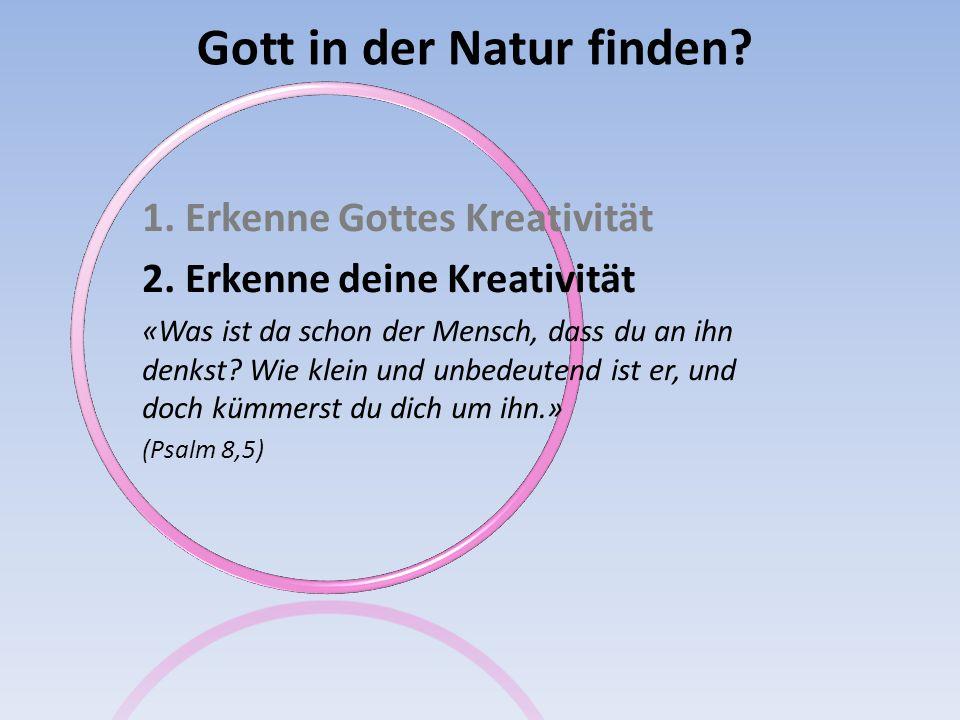 Gott in der Natur finden? 1. Erkenne Gottes Kreativität 2. Erkenne deine Kreativität «Was ist da schon der Mensch, dass du an ihn denkst? Wie klein un
