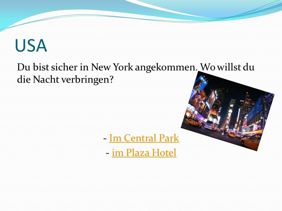USA Du bist sicher in New York angekommen. Wo willst du die Nacht verbringen? - Im Central ParkIm Central Park - im Plaza Hotelim Plaza Hotel
