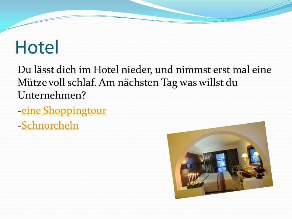Hotel Du lässt dich im Hotel nieder, und nimmst erst mal eine Mütze voll schlaf. Am nächsten Tag was willst du Unternehmen? -eine Shoppingtoureine Sho