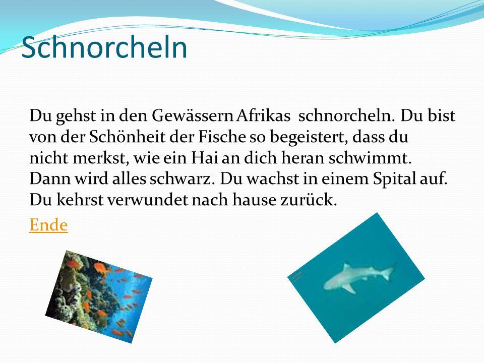 Schnorcheln Du gehst in den Gewässern Afrikas schnorcheln. Du bist von der Schönheit der Fische so begeistert, dass du nicht merkst, wie ein Hai an di