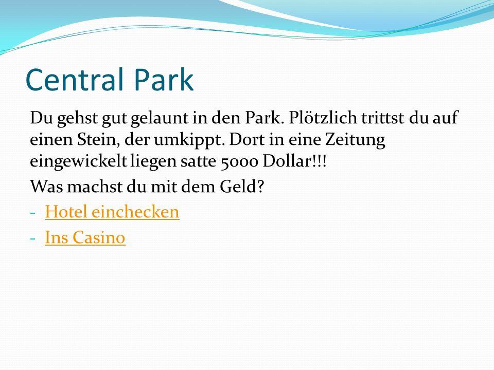 Central Park Du gehst gut gelaunt in den Park. Plötzlich trittst du auf einen Stein, der umkippt. Dort in eine Zeitung eingewickelt liegen satte 5000