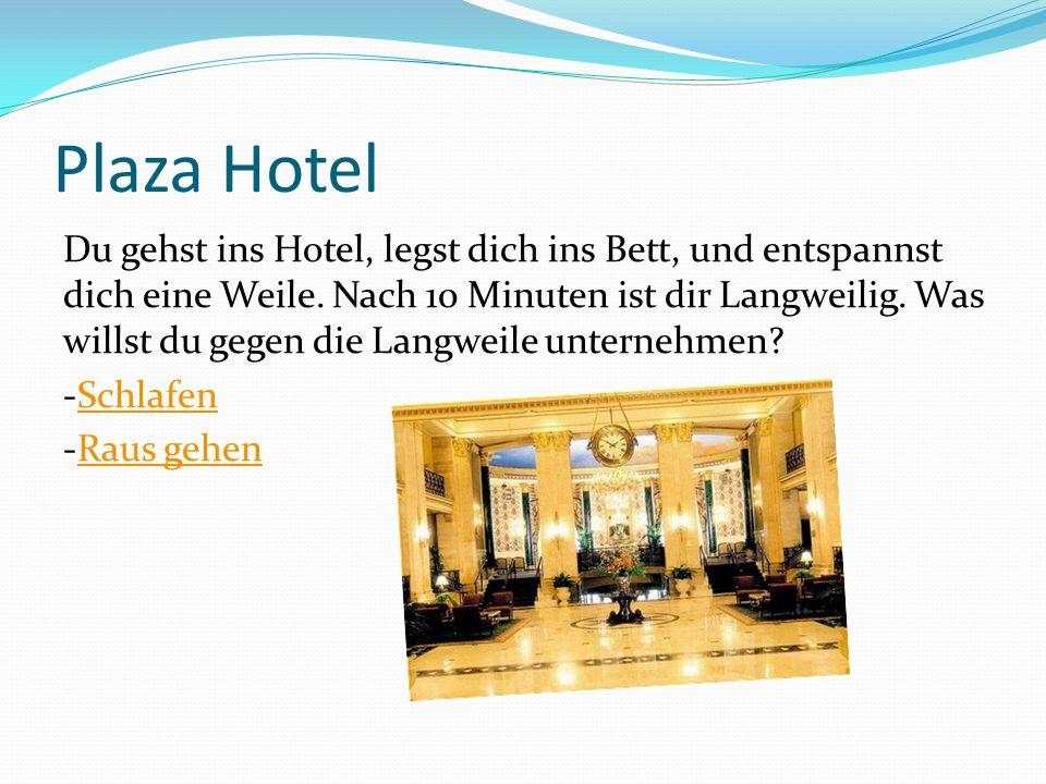 Plaza Hotel Du gehst ins Hotel, legst dich ins Bett, und entspannst dich eine Weile. Nach 10 Minuten ist dir Langweilig. Was willst du gegen die Langw