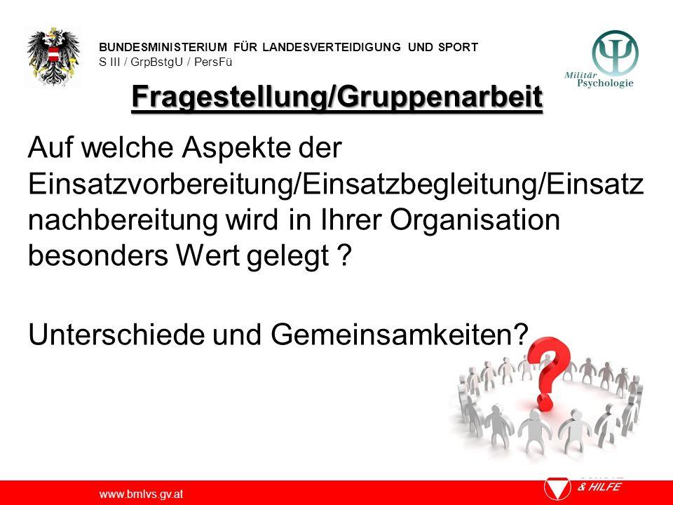 BUNDESMINISTERIUM FÜR LANDESVERTEIDIGUNG UND SPORT S III / GrpBstgU / PersFü www.bmlvs.gv.at Fragestellung/Gruppenarbeit Auf welche Aspekte der Einsat