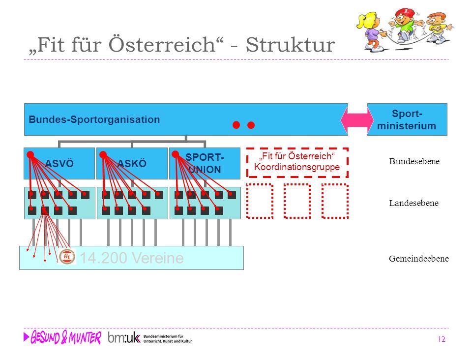 12 Fit für Österreich - Struktur Bundes-Sportorganisation Sport- ministerium 14.200 Vereine ASKÖ SPORT- UNION ASVÖ Fit für Österreich Koordinationsgru