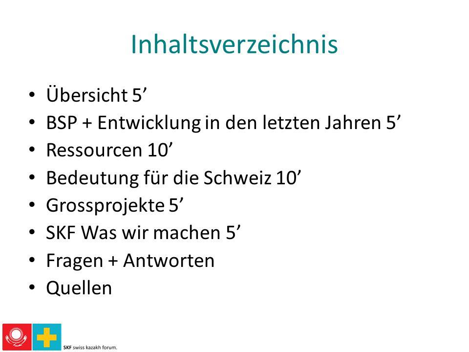 Inhaltsverzeichnis Übersicht 5 BSP + Entwicklung in den letzten Jahren 5 Ressourcen 10 Bedeutung für die Schweiz 10 Grossprojekte 5 SKF Was wir machen