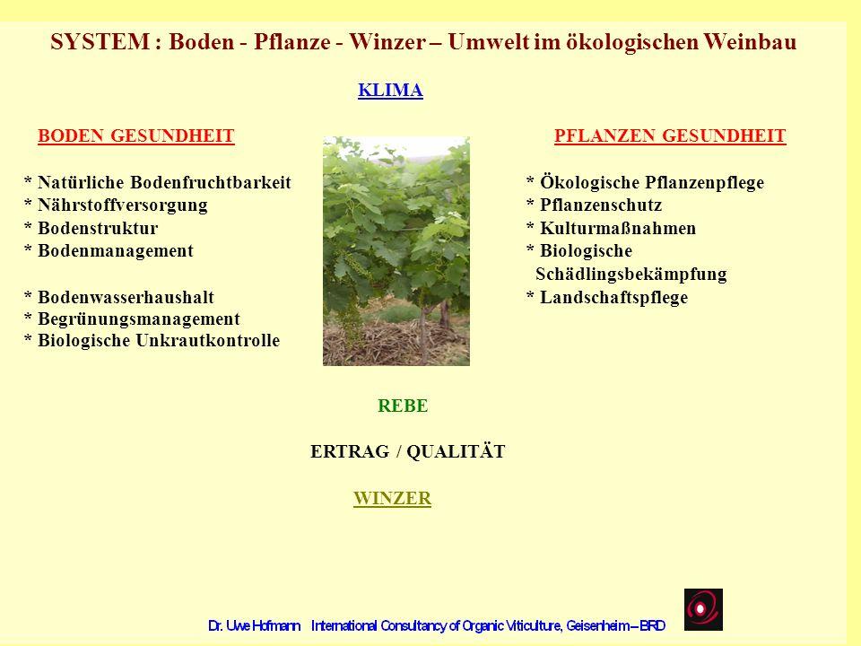 SYSTEM : Boden - Pflanze - Winzer – Umwelt im ökologischen Weinbau KLIMA BODEN GESUNDHEIT PFLANZEN GESUNDHEIT * Natürliche Bodenfruchtbarkeit * Ökolog