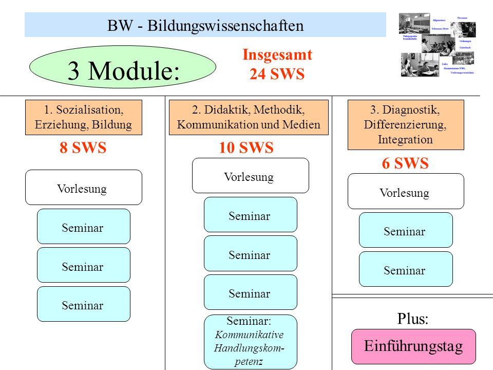 BW - Bildungswissenschaften 3 Module: 1. Sozialisation, Erziehung, Bildung 2. Didaktik, Methodik, Kommunikation und Medien 3. Diagnostik, Differenzier