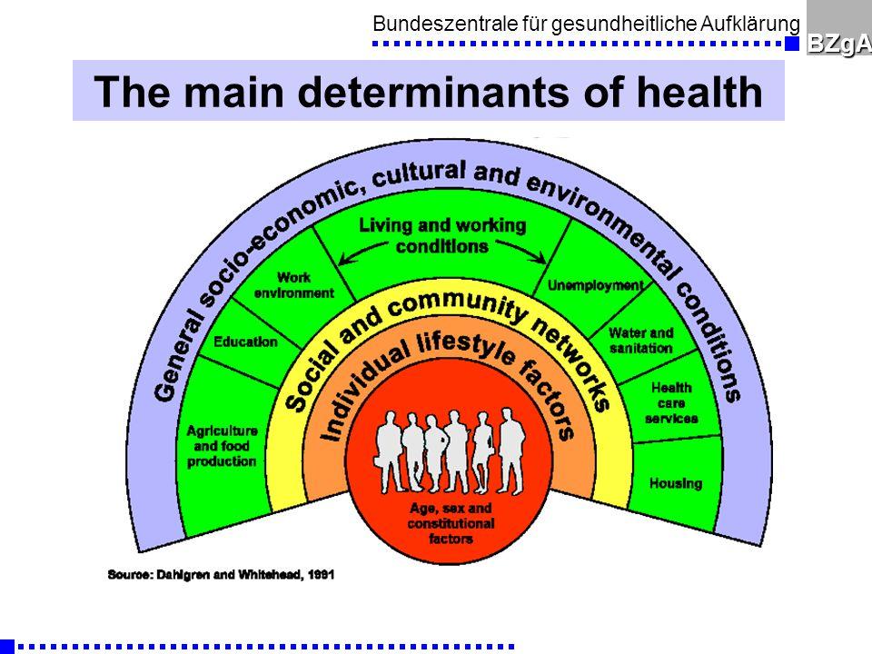 Bundeszentrale für gesundheitliche AufklärungBZgA The main determinants of health