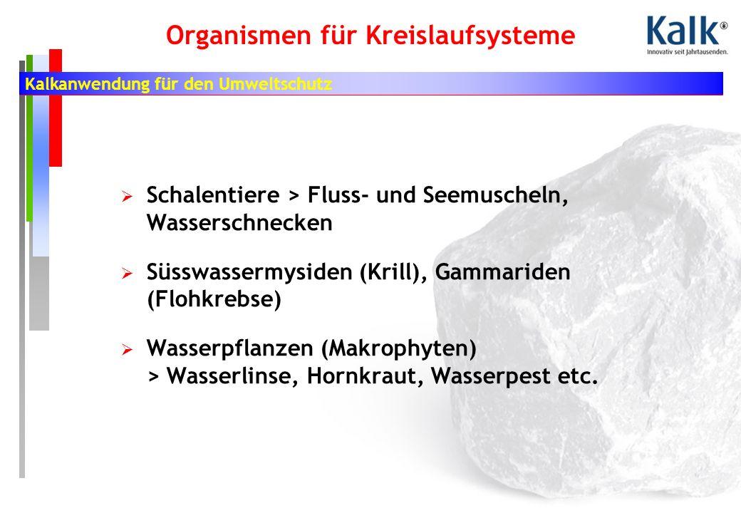 Kalkanwendung für den Umweltschutz Organismen für Kreislaufsysteme Schalentiere > Fluss- und Seemuscheln, Wasserschnecken Süsswassermysiden (Krill), Gammariden (Flohkrebse) Wasserpflanzen (Makrophyten) > Wasserlinse, Hornkraut, Wasserpest etc.