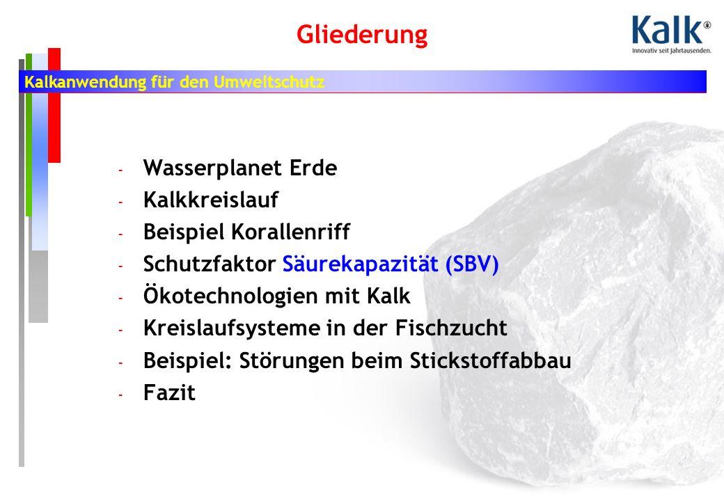 Kalkanwendung für den Umweltschutz Gliederung - Wasserplanet Erde - Kalkkreislauf - Beispiel Korallenriff - Schutzfaktor Säurekapazität (SBV) - Ökotechnologien mit Kalk - Kreislaufsysteme in der Fischzucht - Beispiel: Störungen beim Stickstoffabbau - Fazit