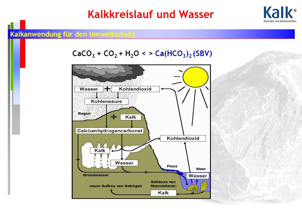 Kalkanwendung für den Umweltschutz Kalkkreislauf und Wasser CaCO 3 + CO 2 + H 2 O Ca(HCO 3 ) 2 (SBV)