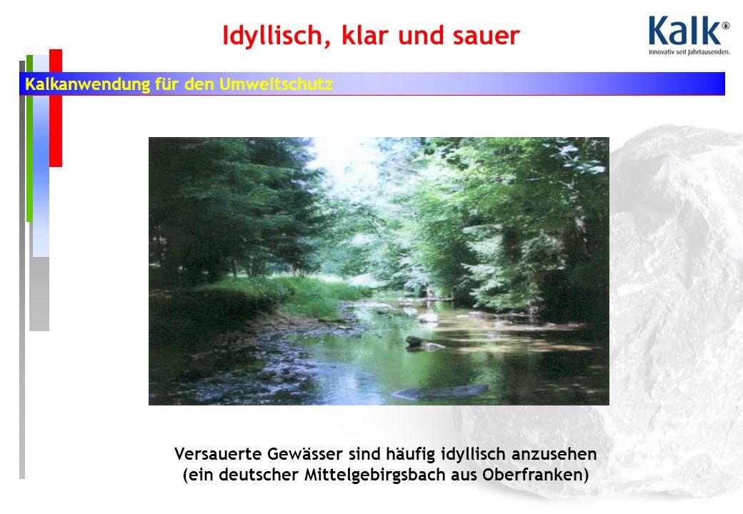 Kalkanwendung für den Umweltschutz Idyllisch, klar und sauer Versauerte Gewässer sind häufig idyllisch anzusehen (ein deutscher Mittelgebirgsbach aus Oberfranken)