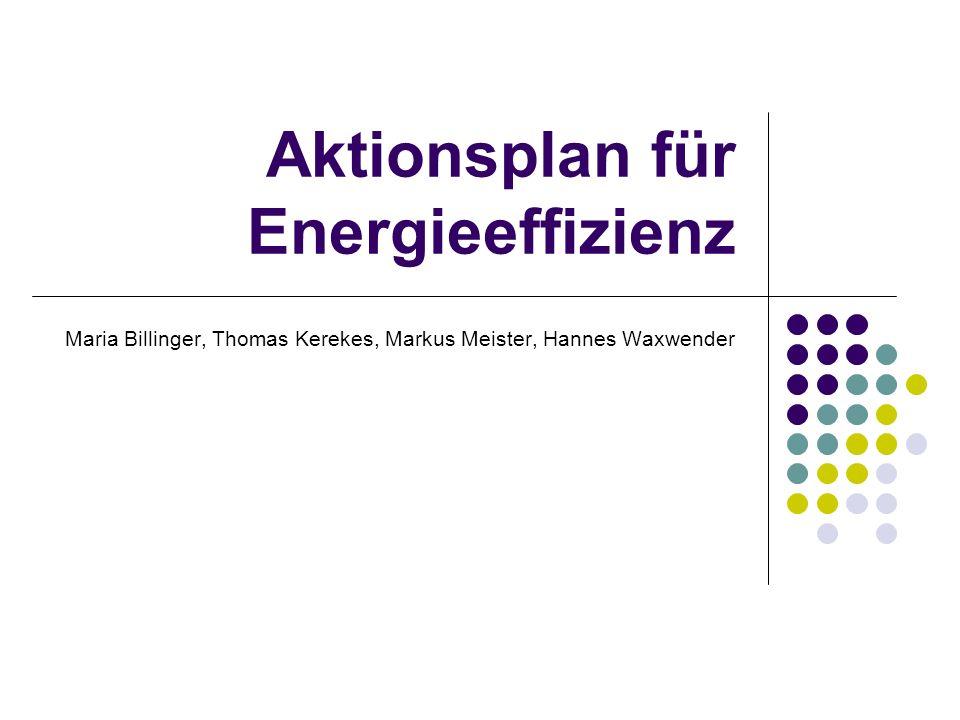 BEGRÜNDUNG Zunehmende Abhängigkeit von Energieeinfuhren weltweit angespannten Versorgungslage bei fossilen Brennstoffen, Klimawandel Verringerung der Kohlenstoffemissionen Immer noch: Verschwendung von 20% der Energie durch ineffiziente Nutzung Wettbewerbsfähigkeit verbessern Entwicklung eines großen, zukunftsorientierten Marktes für energieeffiziente Technologien und Produkte fördern