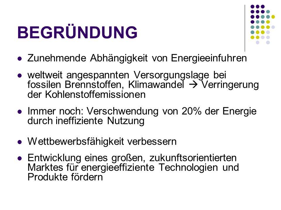 Schlussfolgerungen und nächste Schritte Dynamische Anforderungen an die Energieeffizienz von Produkten, Gebäuden und Dienstleistungen Umsetzung der Öko-Desing-Richtlinie Unterstützung von freiwilligen Zusagen zur Erzielung von Energieeinsparungen Umsetzung und Änderung der Richtlinie über Endenergieeffizienz und Energiedienstleistung Verbesserte Energieumwandlung Entwicklung von Leitlinien für gute Betriebspraktiken Umsetzung und Änderung der Richtlinie über die Förderung der Kraft-Wärme-Kopplung