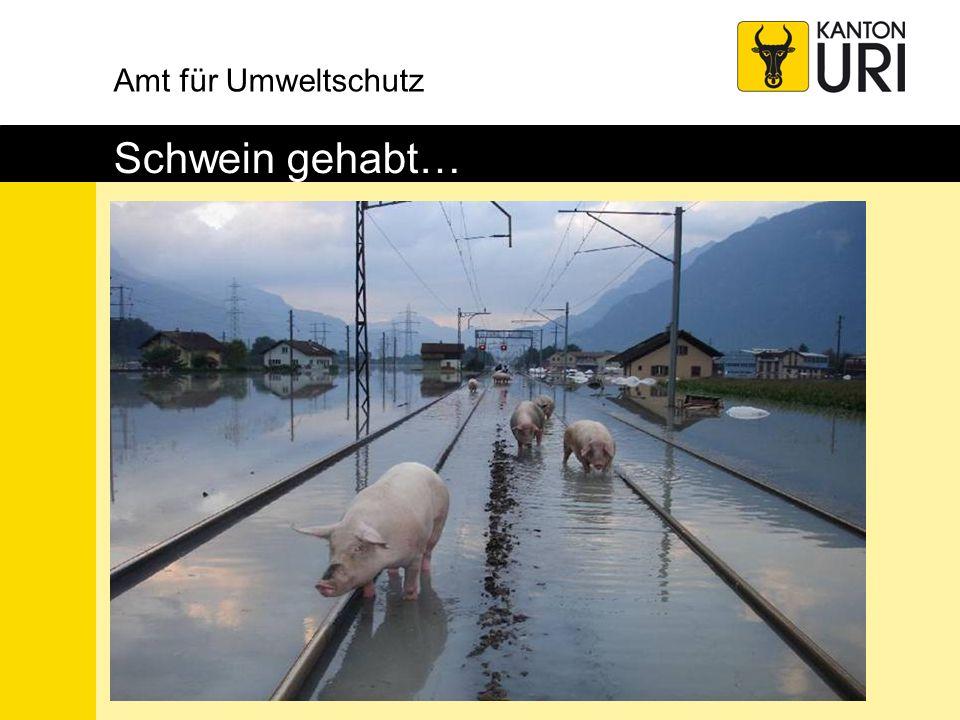 Amt für Umweltschutz Schwein gehabt…
